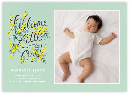 Birth announcements online and paper Paperless Post – Baby Photo Announcements
